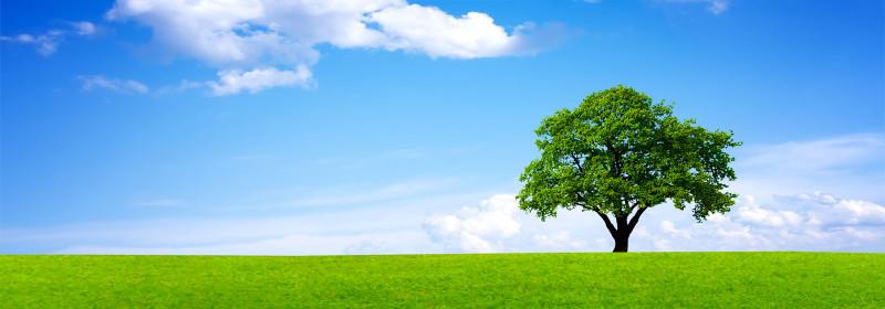 Air propre, énergies renouvlables