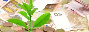 Fiscal vert